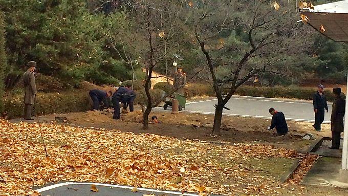 Auf der nordkoreanischen Seite der Grenze heben Arbeiter Gräben aus, offenbar um weitere Fluchtversuche zu unterbinden.