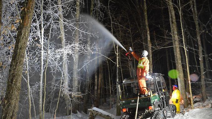 Wissenschaftler bei der Simulation eines Eissturms im Hubbard Brook Experimental Forest bei West Thornton.