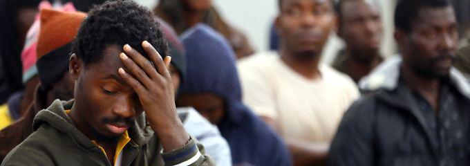 Neues Migrationsportal im Netz: Zahlen gegen Mythen