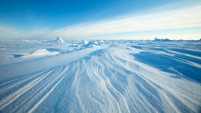 Die Schneemenge in Zentral-Alaska hat im Winter seit Mitte des 18.Jahrhunderts um 117 Prozent zugenommen.