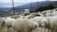 Berge, Meer und Wein in Georgien: Roadtrip durchs Land der Gegensätze