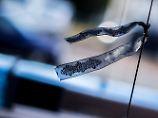 Polizeiauto absichtlich gerammt?: Richter ordnet Haftbefehl gegen Fahrer an