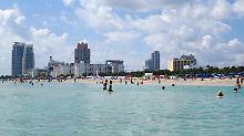Metropole strebt grünes Image an: Miami will die Öko-Hipster anlocken