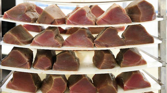 Auf einer Fischfarm in der Nähe des italienischen Brescia wird Thuinfisch geräuchert.