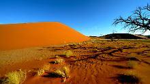 Namib-Wüste zählt zu den großen Nationalparks im Süden des Landes.