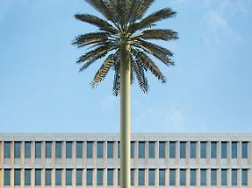 Palme in Berlin: Ein Detail am Rande der BND-Zentrale.
