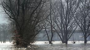 Massives Tauwetter: Mildere Temperaturen sorgen für Hochwassergefahr