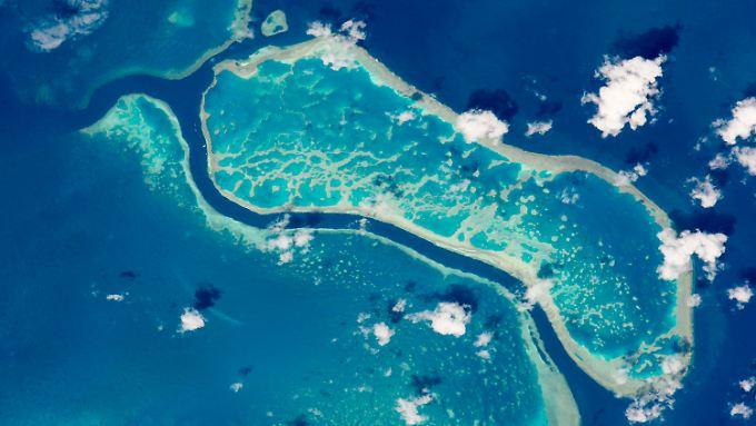 Great Barrier Reef, fotografiert von der ISSaus: Plastikmüll bedroht auch die Korallenriffe.