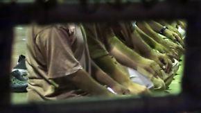 Umstrittenes Gefangenenlager: Trump hält an Guantanamo fest