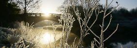 Wetterwoche im Schnellcheck: Sonniger Winter klirrt eisig über Deutschland
