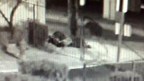 Zwei Männer im Schlaf erschossen: Obdachlose in Las Vegas zittern vor Serientäter