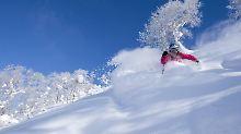 """Wintersport mit """"Powder-Power"""": Hokkaido ist Japans Skiparadies"""