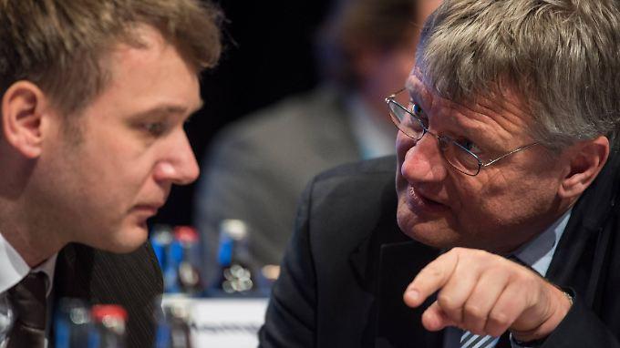 AfD-Chef Meuthen kritisiert die Wortwhl Poggenburgs - und relativiert gleichzeitig dessen Aussage.