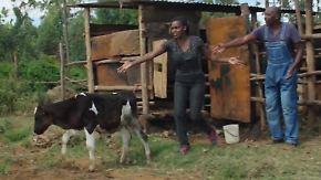 Bester Bauer Kenias: Reality-Show soll Nachwuchs für Landwirtschaft begeistern