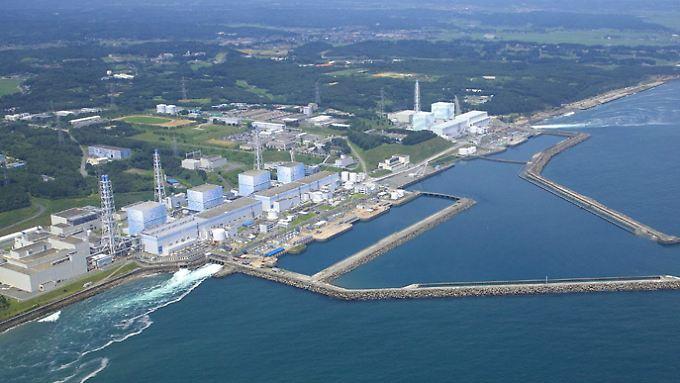 Das havarierte Atomkraftwerk im japanischen Fukushima als Besuchermagnet?