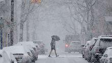 Bundesstaaten rufen Notstand aus: Schneesturm tobt an US-Ostküste