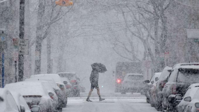 Es schneit wieder in New York. Mitte Februar wurden noch 24 Grad plus gemessen.