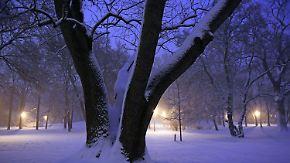 Schneefall im Süden: Deutschland bibbert in der Nacht unter eisiger Kälte