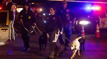 Vorfall Teil der Anschlagsserie?: Paketbombe verletzt zwei weitere Männer