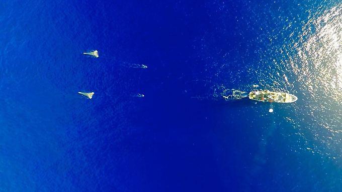 """Das Mutterschiff des Ocean Cleanup Projects, """"R/V Ocean Starr"""", 2015 auf Expedition zum """"Great Pacific Garbage Patch""""."""