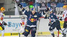Mannheim ebenfalls im Halbfinale: Red Bull München löst Halbfinal-Ticket