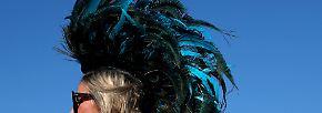 Pack die Badehose ein ...: Coachella - Festival der Superlative