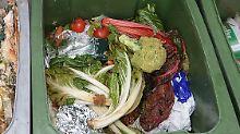 Jährlich wirft der Durchschnittsdeutsche rund 90 Kilogramm Lebensmittel in die Mülltonne.