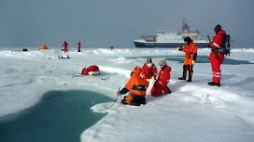 Wissenschaftler vom Alfred-Wegener-Institut nehmen Proben aus einem Schmelztümpel auf arktischem Meereis.