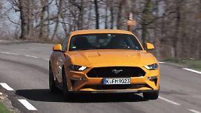 Kraftvolles Facelift für den Mustang: Ford lässt die Muskeln spielen