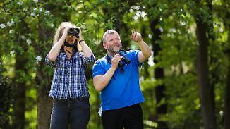 Apps helfen beim Erkennen: Nabu ruft Bürger zum Vogel-Zählen auf