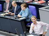 """""""Land wird von Idioten regiert"""": Weidel empört mit ausländerfeindlicher Rede"""