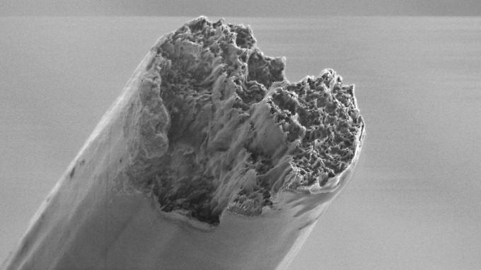 So sieht die Rasterelektronenmikroskop-Aufnahme eine fertigen Faser aus.