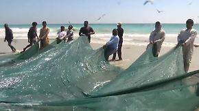 Traditionelle Handarbeit: Sardinenfischer im Oman hoffen auf günstige Kredite
