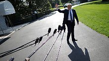 """""""Jeder spielt Spiele"""": Trumps neue Wende bei Nordkorea"""