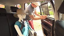 Sonnenschutz und kühle Getränke: So wird das Auto sommerfit