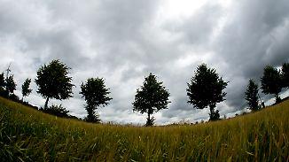 Herbstgefühle im Juli: Frische Temperaturen haben den Freitag im Griff