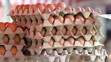 Frage & Antwort, Nr. 541: Warum werden Eier in Läden nicht gekühlt?