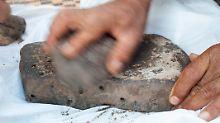 Fundsache, Nr. 1378: Älteste Spuren von Brot
