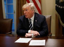 Nach heftiger Kritik: Trump räumt russische Einmischung in US-Wahl ein