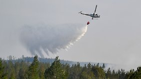 Regierung bittet EU um Hilfe: Waldbrände in Schweden außer Kontrolle