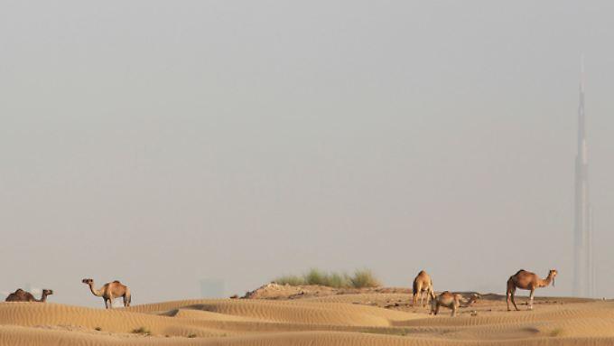 Wüste vor Dubai, hinten rechts steht das Burj Khalifa, das höchste Gebäude der Welt.