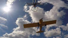 Treffer bei 112 km/h: Harlem Globetrotter zeigt verrückten Trickwurf aus Flugzeug
