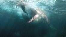 """Kommt es auf die Größe an?: """"MEG"""" oder """"Der weiße Hai XXL"""""""