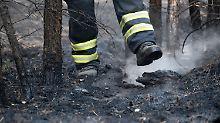 Panzer macht den Weg frei: Feuerwehr kämpft gegen Glut