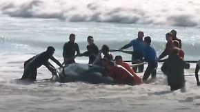 Glück im Unglück an Argentiniens Küste: Helfer retten gestrandete Orcawale