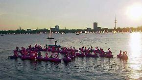 Kaum zu glauben, aber wahr: Hamburger dümpeln auf Flamingos Richtung Weltrekord