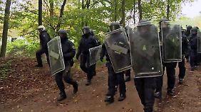 Räumung für Braunkohleabbau: Polizei marschiert im Hambacher Forst ein