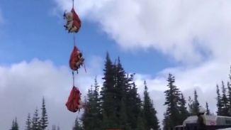 Kaum zu glauben, aber wahr: Aggressive Ziegen fliegen neuem Zuhause entgegen
