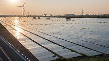 Altmaier will Stromnetz ausbauen: Solarbranche erwartet Rekord-Bilanz