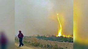 Kaum zu glauben, aber wahr: Seltener Feuer-Tornado schraubt sich in die Höhe